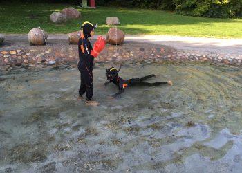 Bada med våtdräkt
